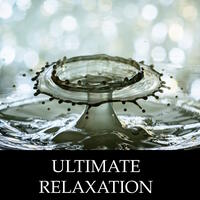 Ultimate Rain & Water Relaxation Sessions - 20 Soothing Water Melodies to Guide You Through Stress & Anxiety Relief, Deep Meditation, Sleep and Self-Improvement