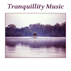 Tranquillity Music – Classical Songs for Relaxation and Rest, Calm Music, Soothing, Instrumental Melodies, Music for Listening After Work