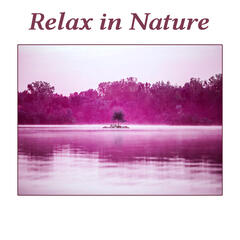 Relax in Nature – Beautiful Nature Sounds of Birds and Ocean Waves, Deep Relaxing Music, Peaceful Sounds of New Age Music for SPA, Wellness