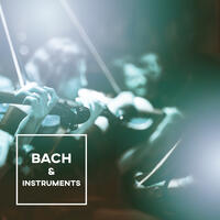 Bach & Instruments – Sounds for Relaxation, Anti Stress Music, Bach After Work, Instrumental Songs for You