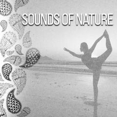 Sounds of Nature – Meditation Music, Ocean Waves, Soothing Sun, Meditation Songs