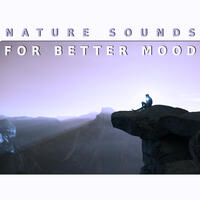 Nature Sounds for Better Mood – Calming Sounds, Relaxing New Age Music, Soothing Nature, Stress Relief, Rest a Bit