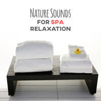 Nature Sounds for Spa Relaxation – Relaxing Music, Nature Music, Calming New Age, Soft Massage