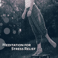 Meditation for Stress Relief – Gentle Sounds for Relaxation, Yoga Training, Deep Sleep, Soothing Nature Sounds, Anti Stress Melodies