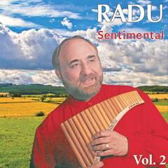 Amazing Panflute, Vol. 2 (Sentimental)