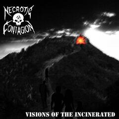 Visions of the Incinerated