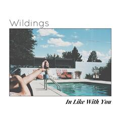 In Like with You