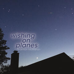 Wishing on Planes