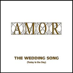 The Wedding Song (Today Is the Day)