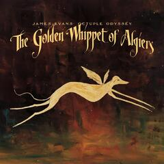 The Golden Whippet of Algiers