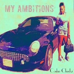 My Ambitions