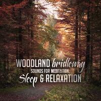 Woodland Bridleway Sounds for Meditation, Sleep & Relaxation
