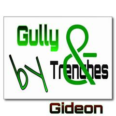 Gully & Trenches