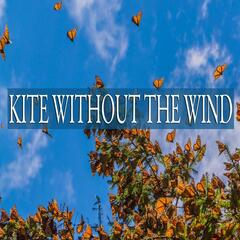 Kite Without the Wind