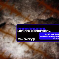 Liminal Condition EP