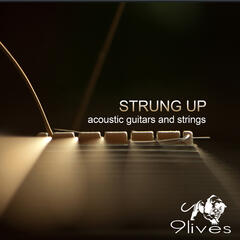 Strung Up: Acoustic Guitars and Strings