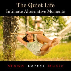 The Quiet Life: Intimate Alternative Moments