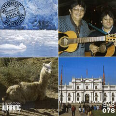 Authentic South America, Vol. 8: Central & South Chile