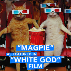 "Magpie (As Featured in ""White God"" Film) - Single"