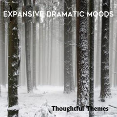 Thoughtful Themes: Expansive Dramatic Moods