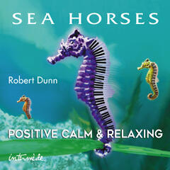 Sea Horses: Positive, Calm & Relaxing