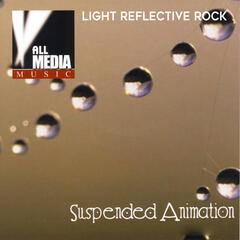 Suspended Animation: Light Reflective Rock