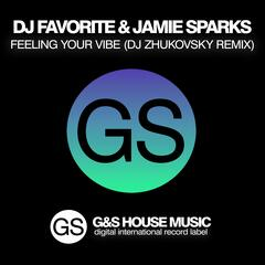 Feeling Your Vibe (DJ Zhukovsky Remix)