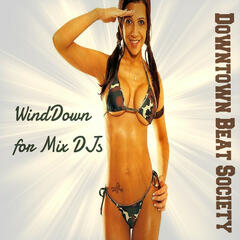 WindDown for Mix DJs