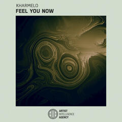 Feel You Now - Single