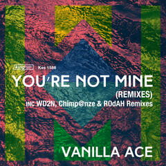 You're Not Mine (Remixes)