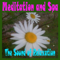 Meditation and Spa