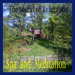 Spa and Meditation