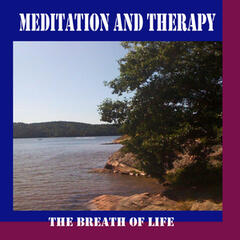 Meditation and Therapy