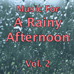 Music for a Rainy Afternoon Vol.2