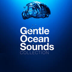 Gentle Ocean Sounds Collection