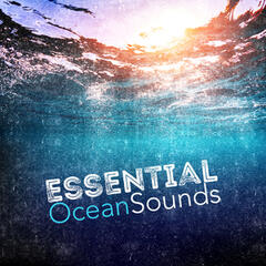 Essential Ocean Sounds