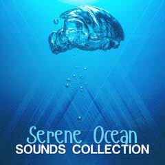Serene Ocean Sounds Collection
