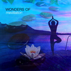 Wonders of Meditation