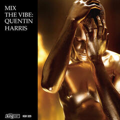 Mix the Vibe: Quentin Harris Timeless Re-Collection