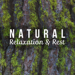 Natural Relaxation & Rest