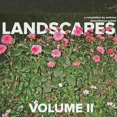 Landscapes, Vol. II
