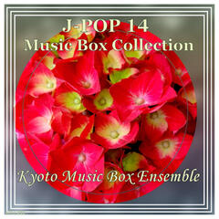 J-Pop 14 Music Box Collection