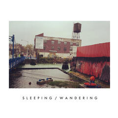 Sleeping/Wandering