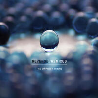 Reverse//Remixes