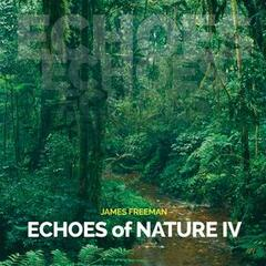 Echoes of Nature IV