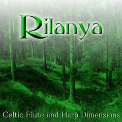 Celtic Flute And Harp Dimensions