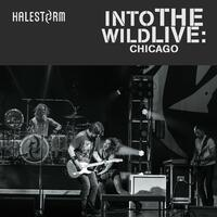 Into The Wild Live: Chicago