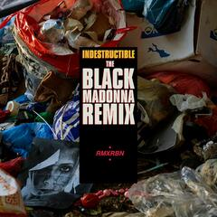 Indestructible (The Black Madonna Remix)