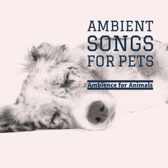 Ambient Songs for Pets
