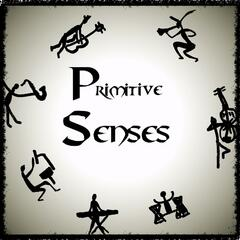 Primitive Senses